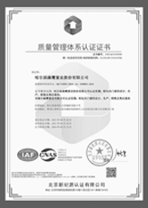 Sayyas passed the ISO9001:2000 quality management system certification.